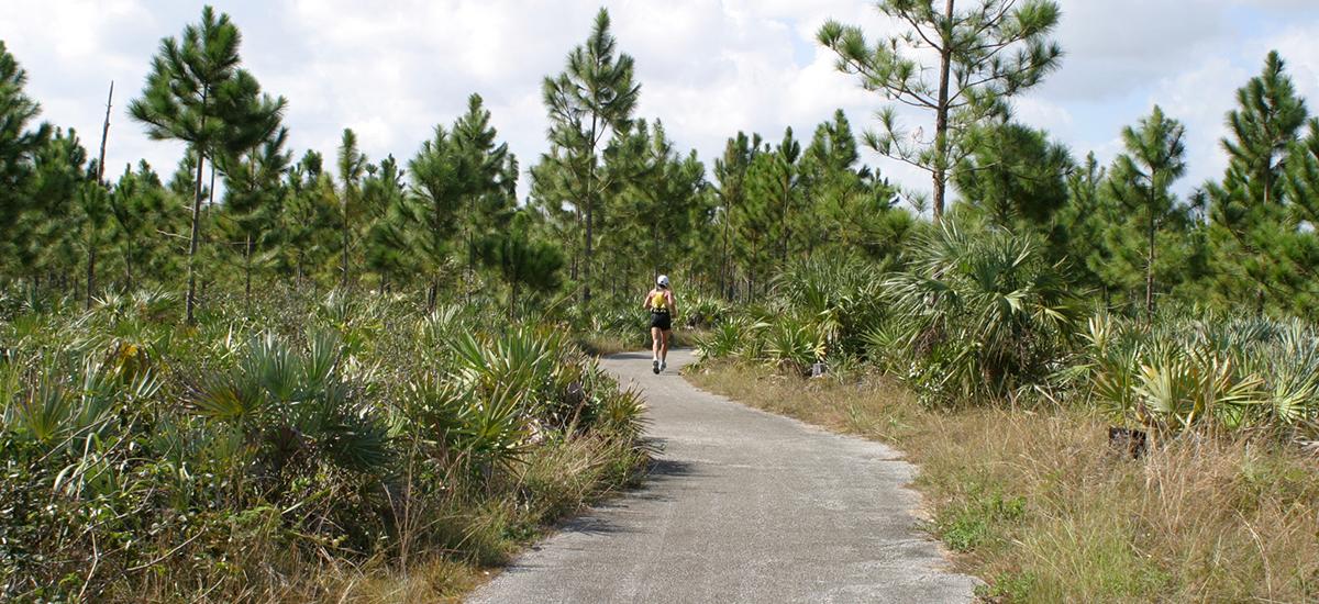Miami Half Iron Triathlon - Integrity Multisport, Home, Miami Half Iron & International Triathlon